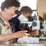 Am Bild sehen Sie eine Frau und einen Mann, die Bodentiere  in einem Mikroskop ansehen