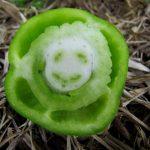 happy pepper