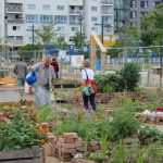 Community Garden in front of the GB* at the Max-Winter-Platz in 2nd distirct © B2/20