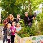 Mit rund 330 mobilen Beeten und zahlreichen Gemeinschaftsgärten trägt wohnpartner zu einem guten Zusammenleben in Wiens Gemeindebauten bei. © Stefan Zamisch/Wohnservice Wien