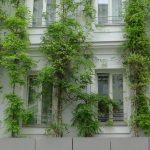 Fassadenbegrünung mittels Trogbepflanzung zur Verbesserung des Mikroklimas in den Straßen © Fricke