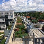 Urban Gardening at the roof, 22nd district of Vienna  © GrünStattGrau